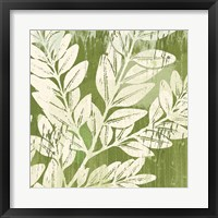 Framed Sage Foliage
