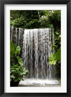 Framed Singapore, National Orchid Garden, Waterfall