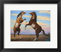 Framed Boxing Horses