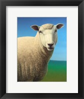 Framed Sheep