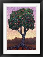 Framed Apple Tree