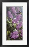 Framed Scents of Spring - Chickadee