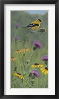 Framed Thistle Gold Goldfinch