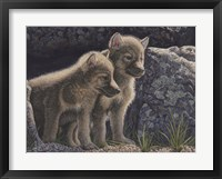 Framed Wolf Pups