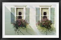 Framed Windows With Flowerboxes