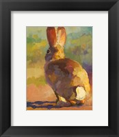 Framed Backdoor Bunny