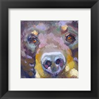 Framed Bear with Me