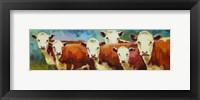 Framed Cattle Call