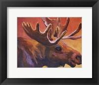 Framed Milton the Moose