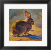 Framed Sunny Bunny