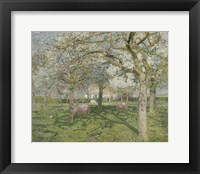 Framed Orchard in Springtime 1902