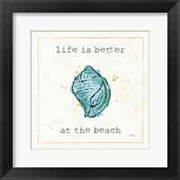 Framed Sea Treasures I