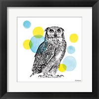 Framed Sketchbook Lodge Owl