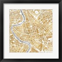 Framed Gilded Rome Map
