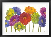 Framed Colorful Gerbera Daisies