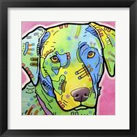 Framed Labrador
