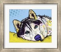 Framed Siberian Husky 2