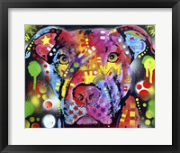 Framed Brooklyn Pit Bull