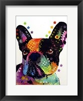 Framed French Bulldog 1