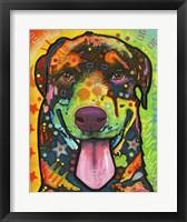 Framed Rottie Pup