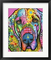 Framed Bloodhound