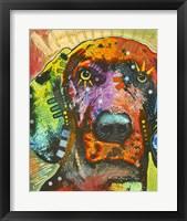 Framed Sunny Day Dog