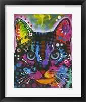 Framed Cat 12