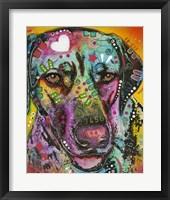 Framed Brown Eyed Dog