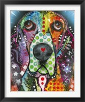 Framed Heart-Nosed Dog
