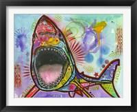 Framed Shark 1