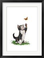 Framed Cat With Butterfly