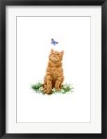 Framed Ginger Cat