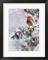 Framed Robin On Holly 2