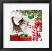Framed Kitten And Present