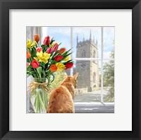 Framed Cat At Window