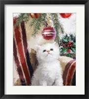 Framed Kitten Chair