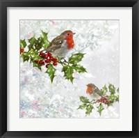 Framed Robins