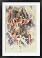 Framed Tiger Lilies
