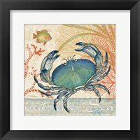 Framed Oceana II