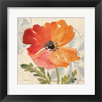 Framed Watercolor Poppies V
