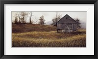 Framed Golden Meadow