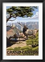 Framed Grand Canyon Park Elk