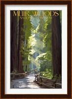 Framed Muir Woods National Monument