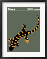 Framed Montague State Posters - Illinois