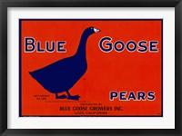 Framed Blue Goose Pears