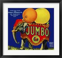 Framed Jumbo Orange and Grapefruit