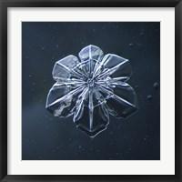 Framed Snowflake 009.2.9.2014