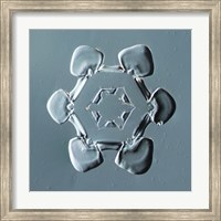 Framed Stellar Plate Snowflake 001.2.14.2014