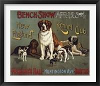 Framed Bench Show. New England Kennel Club