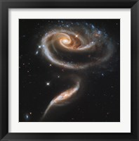 """Framed """"""""Rose"""""""" Made of Galaxies Highlights Hubble's 21st Anniversary"""